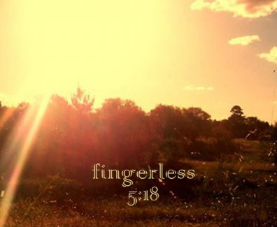 Fingerless cover