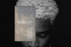 Forest Collection – Lando Ameen